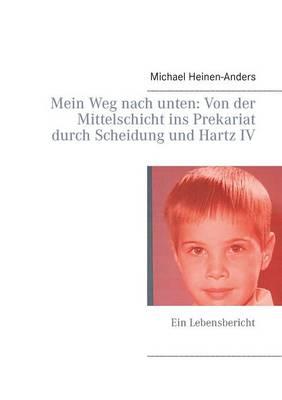 Mein Weg Nach Unten: Von Der Mittelschicht Ins Prekariat Durch Scheidung Und Hartz IV (Paperback)