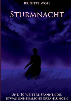 Sturmnacht (Paperback)