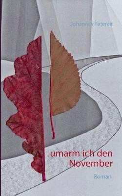 Umarm Ich Den November (Paperback)