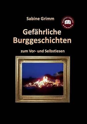Gefahrliche Buchgeschichten (Paperback)