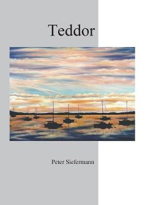 Teddor (Paperback)