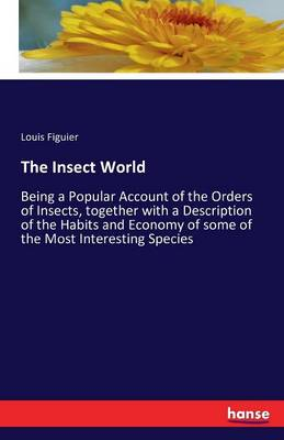 The Insect World (Paperback)