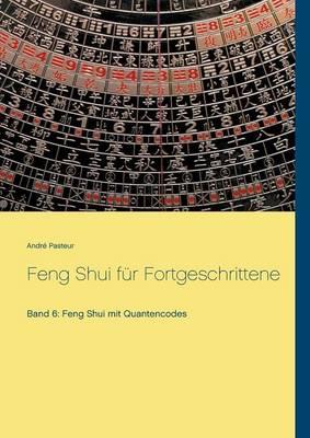 Feng Shui Fur Fortgeschrittene (Paperback)