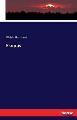 Esopus (Paperback)