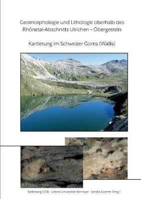 Geomorphologie Und Lithologie Oberhalb Des Rhonetal-Abschnitts Ulrichen - Obergesteln (Paperback)