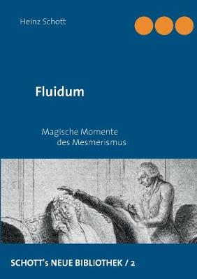 Fluidum (Paperback)