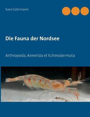 Die Fauna der Nordsee (Paperback)