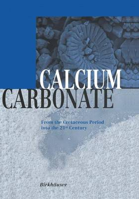 Calcium Carbonate: From the Cretaceous Period into the 21st Century (Hardback)