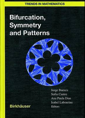 Bifurcation, Symmetry and Patterns - Trends in Mathematics (Hardback)