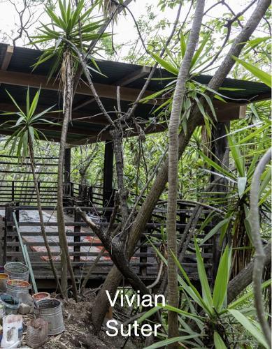 Vivian Suter (Paperback)