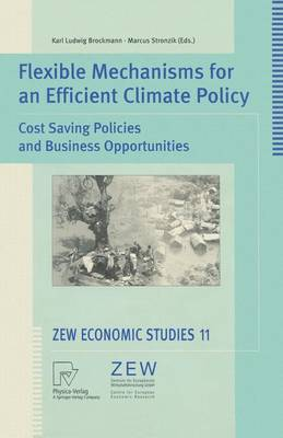 Flexible Mechanisms for an Efficient Climate Policy: Cost Saving Policies and Business Opportunities - ZEW Economic Studies 11 (Paperback)