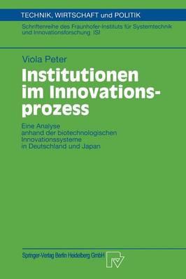 Institutionen Im Innovationsprozess (Paperback)