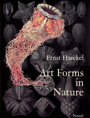 Art Forms in Nature: The Prints of Ernst Haeckel (Paperback)