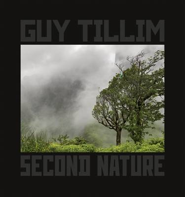 Guy Tillim: Second Nature (Paperback)