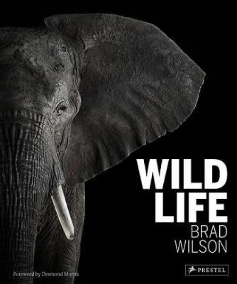 Wild Life (Hardback)