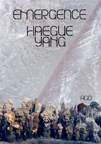 Haegue Yang: Emergence (Hardback)