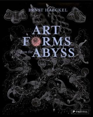 Art Forms from the Abyss: Ernst Haeckel's Images from the HMS Challenger Expedition (Paperback)