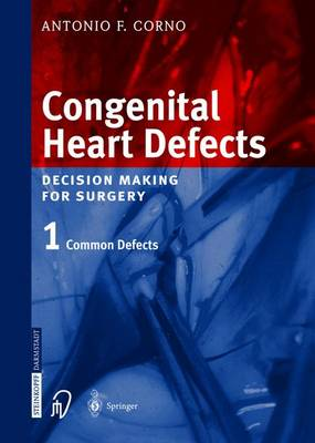 Congenital Heart Defects: Decision Making for Cardiac Surgery Volume 1 Common Defects (Hardback)