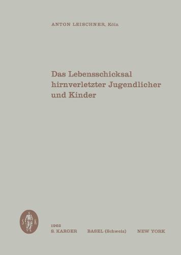 Das Lebensschicksal hirnverletzter Jugendlicher und Kinder (Paperback)