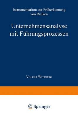 Unternehmensanalyse Mit F hrungsprozessen: Instrumentarium Zur Fr herkennung Von Risiken (Paperback)