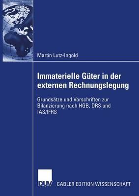 Immaterielle Guter in der Externen Rechnungslegung (Paperback)