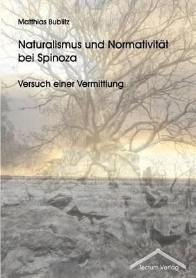 Naturalismus Und Normativit T Bei Spinoza (Paperback)