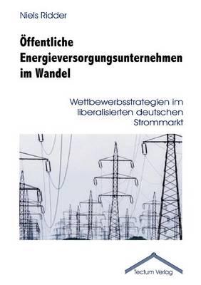 Ffentliche Energieversorgungsunternehmen Im Wandel (Paperback)
