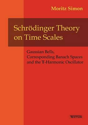 Schr Dinger Theory on Time Scales (Paperback)