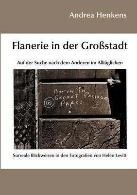 Flanerie in Der Gro Stadt (Paperback)