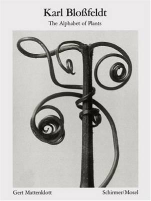 Karl Blossfeldt: Alphabet of Plants: Masters of the Camera (Paperback)
