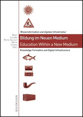 Education within a New Medium: Knowledge Formation and Digital Infrastructure (Paperback)