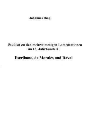 Studien Zu Den Mehrstimmigen Lamentationen Im 16. Jahrhundert (Paperback)