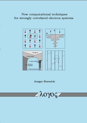 New Computational Techniques for Strongly Correlated Electron Systems (Paperback)