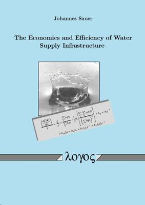 The Economics and Efficiency of Water Supply Infrastructure (Paperback)