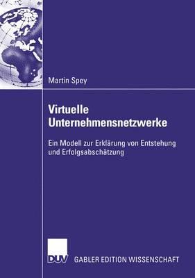 Virtuelle Unternehmensnetzwerke (Paperback)