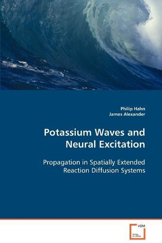 Potassium Waves and Neural Excitation (Paperback)