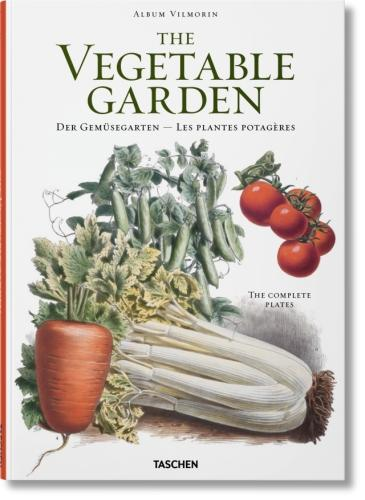 Vilmorin, Vegetable Garden (Paperback)