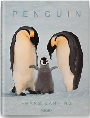 Penguins (Hardback)