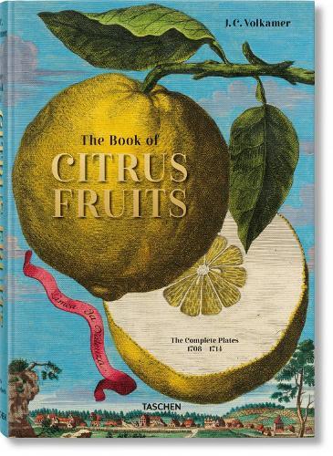 Volkamer. Citrus Fruits (Hardback)