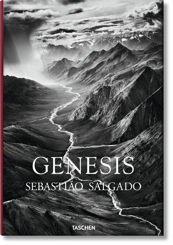 Genesis (Hardback)