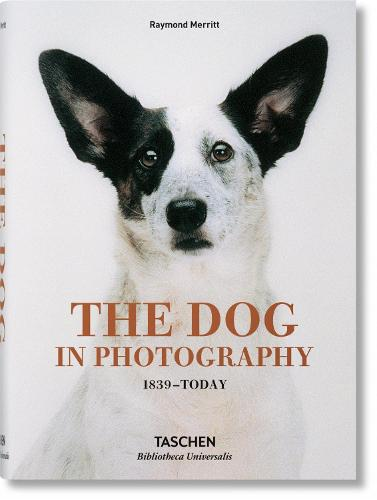 The Dog in Photography 1839-Today (Hardback)