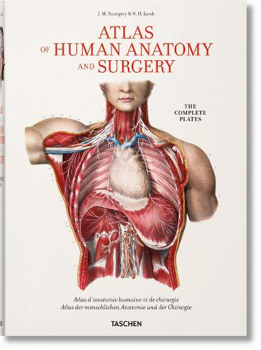 Bourgery. Atlas of Human Anatomy and Surgery (Hardback)