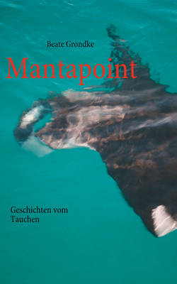Mantapoint (Paperback)