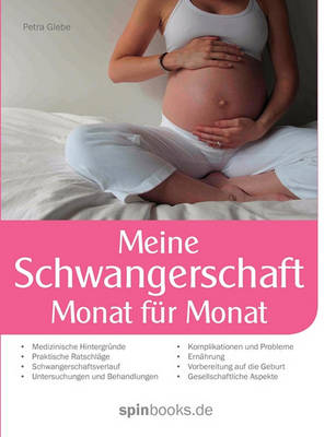 Meine Schwangerschaft (Paperback)