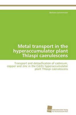 Metal Transport in the Hyperaccumulator Plant Thlaspi Caerulescens (Paperback)
