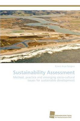Sustainability Assessment (Paperback)