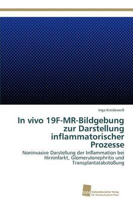 In Vivo 19f-MR-Bildgebung Zur Darstellung Inflammatorischer Prozesse (Paperback)