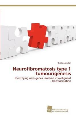 Neurofibromatosis Type 1 Tumourigenesis (Paperback)