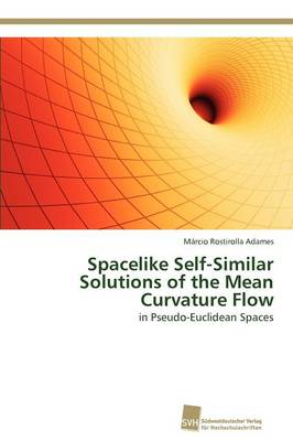 Spacelike Self-Similar Solutions of the Mean Curvature Flow (Paperback)