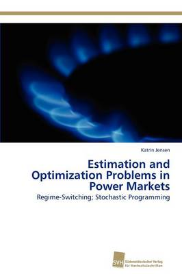 Estimation and Optimization Problems in Power Markets (Paperback)
